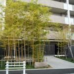東京都八王子市マンション・アパート工事